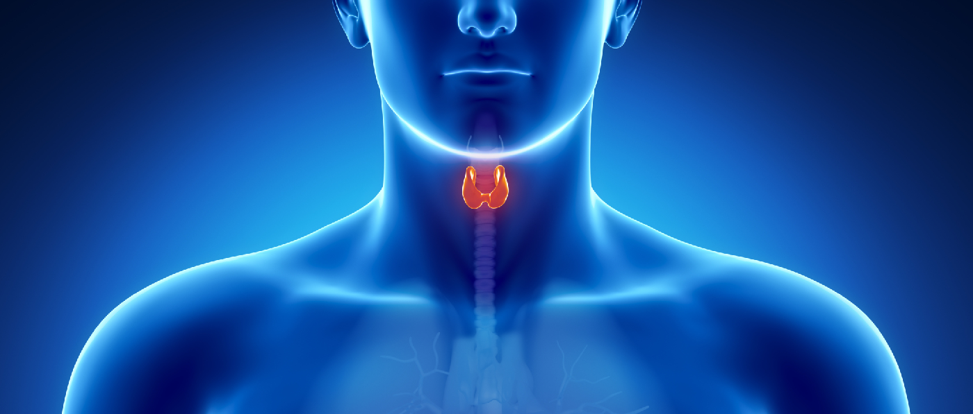 THYROID SUPPORT – COMPLETE FORMULA